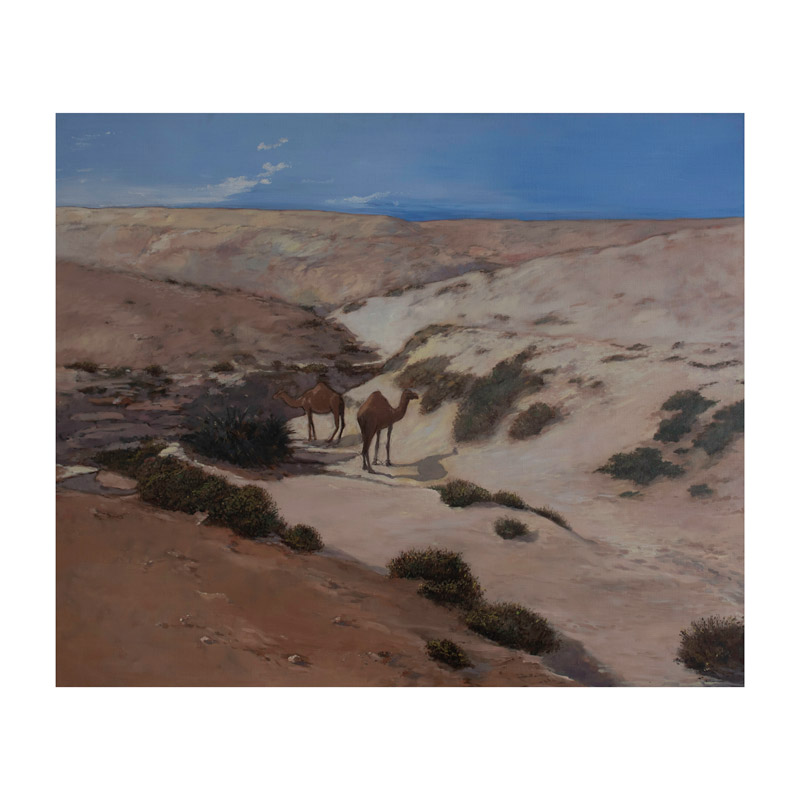 rashid al khalifa artwork oil on canvas camels